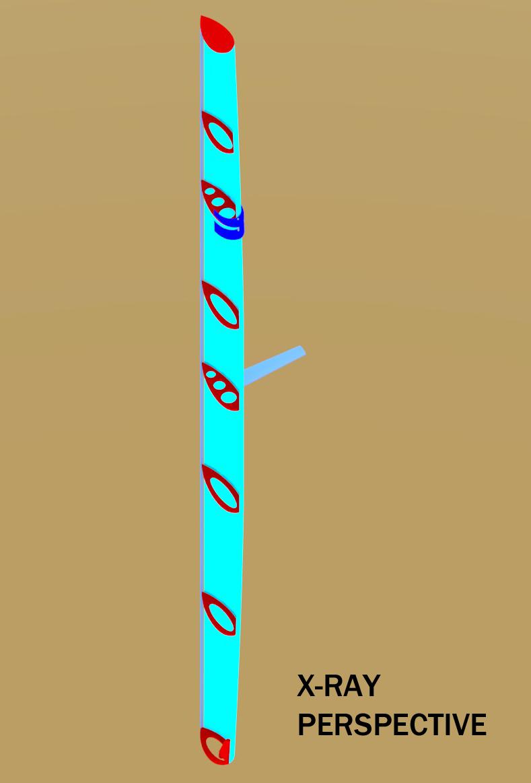 xrayperspective-copy
